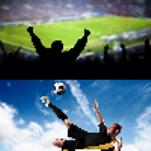 Программа для ставок на спорт.